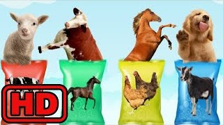 Kid -Kids -Learn colors With Wrong Heads Of FARM Animals/ Animal Toy Surprise Bag Animation for Chi