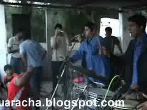 LOS PRINCIPES DE LA GUARACHA EN VIVO