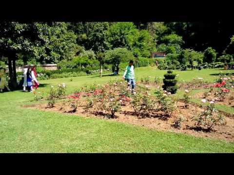 Achabal Garden (Mughal Garden)Anantnag Kashmir