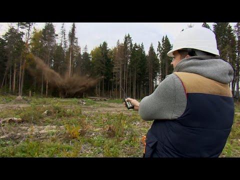 Валим лес пиротехникой.  Lumberjack shotfirer.