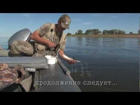 Рыбалка. Ловля леща на кольцо. Часть 1.