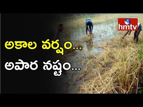 Heavy Rains In Telugu States Huge Property Loss | Telugu News | Hmtv