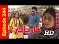 Hareyani Ep 244 -Sindh TV Soap Serial  - 11-5-2018 - HD1080p -SindhTVHD-Drama