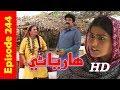 Hareyani Ep 244 -Sindh TV Soap Serial  - 11-5-2018 - HD1080p -SindhTVHD-Drama