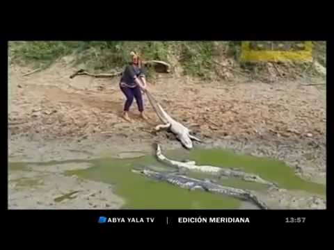Desastres ambientales en Bolivia