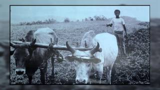 Amazing life Testimony of Captain Solomone with Eden Hailu part 2