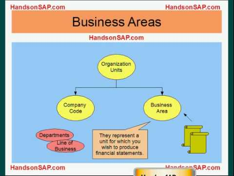 SAP ECC ERP Tutorial - Client, Company Code, and Business Area