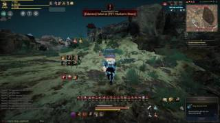 BlackDesert Giant Berserker 200 ap Grinding level 59 to 60