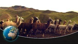 The Pan-American Highway - From Peru to Tierra del Fuego