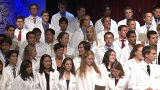 The Four Years of Medical School