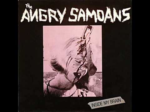 Angry Samoans - You Stupid Asshole