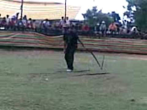 Pa0's 2nd strike Bullwhip