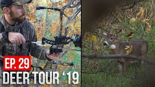 MONSTER BUCK at 30 Yards! - Hunting Bedding Area Scrapes