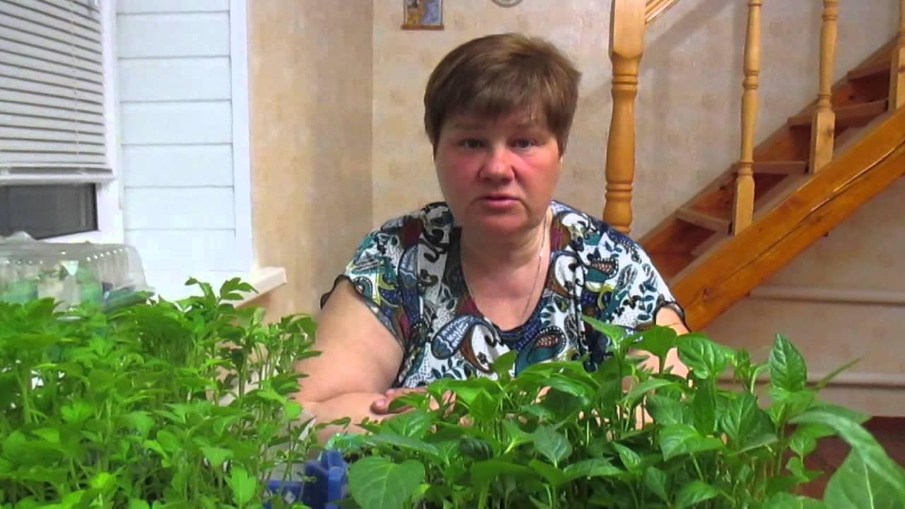 Сад и огород юлия минеева новый выпуск 2018 г