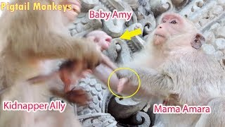 Super Crying Loudly Very Small Baby Amy In While Mama Amara Drag Back From Kidnapper Ally / PTM 1248
