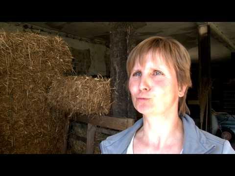 Vorgestellt - Schafzüchterin Aus Weseram Mit Ihrer Herde