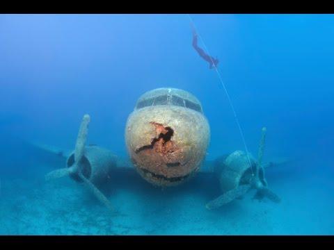 Bizarre   Deep Sea Youtube