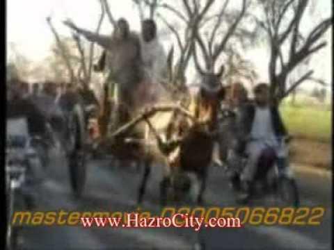 Horse Race 08 Feb, 2010 (laal Badshah Ghora & Chhachhi Ghorha) Ghourghushti 04 video