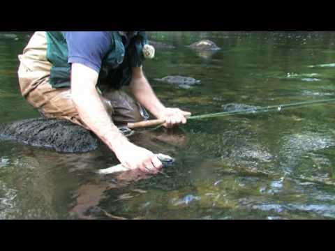 La pêche dhiver sur obskom le réservoir deau de vidéo
