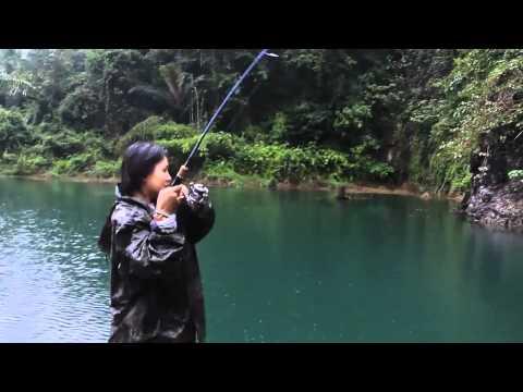 7Seasproshop Present Palms Baymatic Fishing Rods 2012
