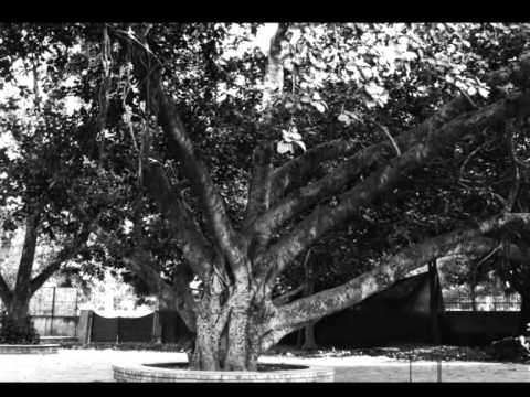 Bhula Do Woh Baatein Purani - Lyrics HD