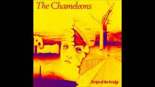 Watch Chameleons Dont Fall video