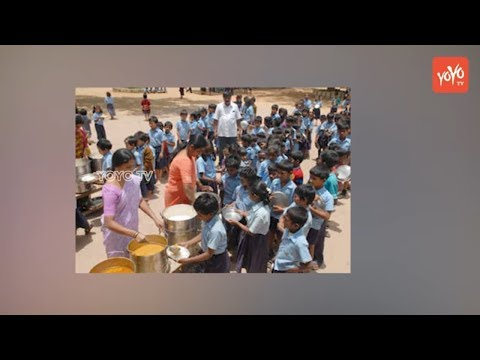 Rats found in midday meal in Kadapa Government school | AP News | YOYO TV Channel