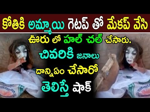 Monkey halchal In Internet || News updates In Telugu || Viral News updates || jilebi