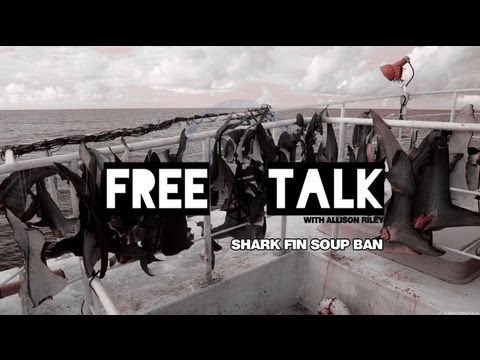 Free Talk - Episode 15 - Shark Fin Soup Ban?