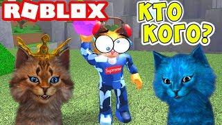 РОБЛОКС ЧЕМПИОНАТ КОТОВ ПО ВЫЖИВАНИЮ! Roblox Cursed Island Котик Игроман и Котёнок Лайк