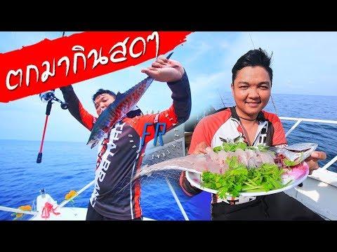ใช้ชีวิต กลางทะเล หาปลามาทำอาหาร กินบนเรือ Fishing Cooking On Boat #fishing Reality