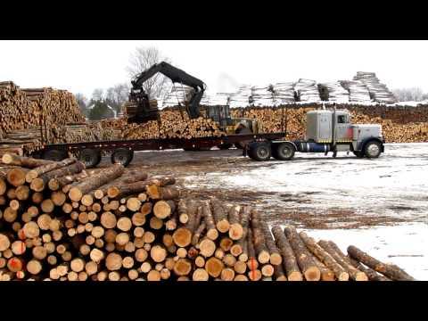 Paul Eberly Peterbilt 359 Getting Unloaded (HD)