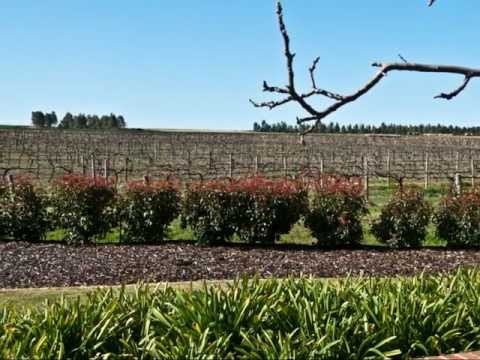 Australia: Barossa Valley WIne Tour September 2011