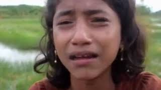 rohinga muslim are torture and rape by mayanmar govt...