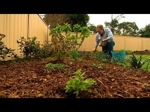 Gardening Deal With Weeds Youtube