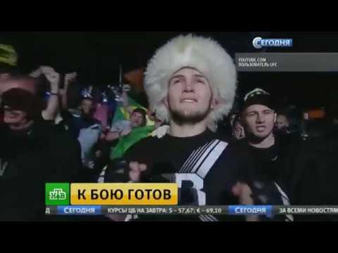 Хабиб Нурмагомедов готовится к чемпионскому бою