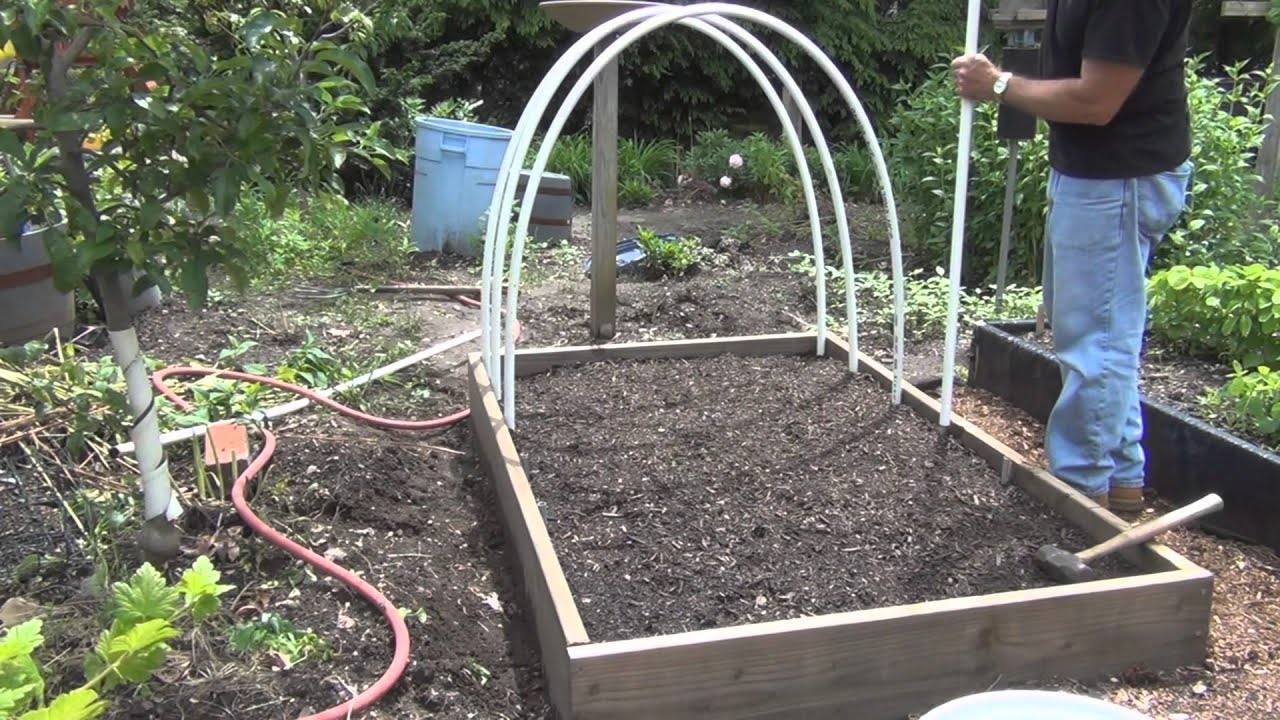 Building A Low Tunnel And Planting Lettuce Youtube