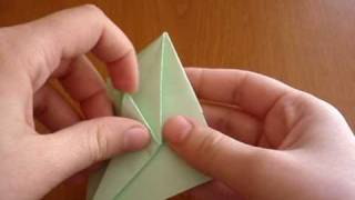 Origami Macaw Parrot  (part 1 Of 2)