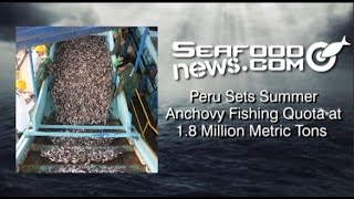 Peru Sets Summer Anchovy Fishing Quota at 1.8 Million Metric Tons
