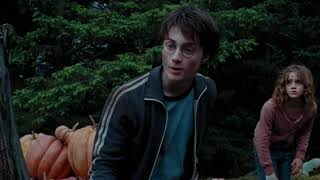 Harry And Hermione Save Buckbeak - Harry Potter And The Prisoner Of Azkaban