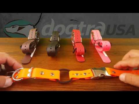 Quick Snap E-Collar Strap  - Review   DogtraUSA.com