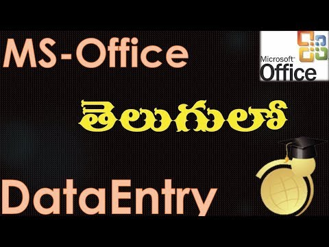 MS Office 2003 in Telugu - Data Entry in Excel