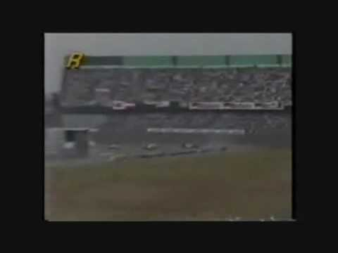 gianni morbidelli spins out of the 1995 japanese grand prix.