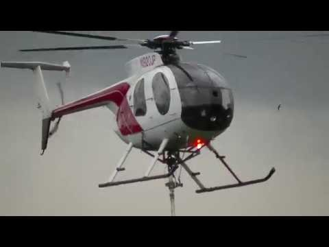 MD500 Tree Pruning by Helicopter! Helicopter Flying Saw. Hughes 500D in Nonstop Action! Day 1.