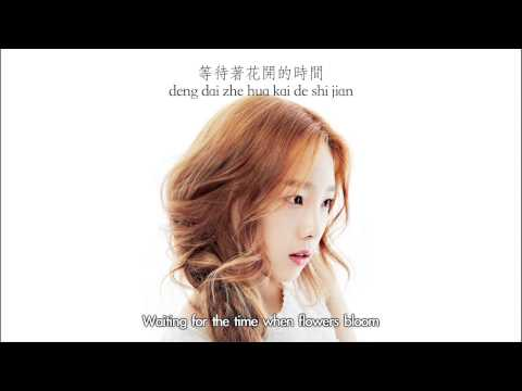 Taeyeon - Bye Chinese Ver. (Chinese & Hanyu Pinyin & Eng sub) [Mr. Go OST]