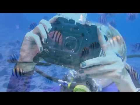 Sony RX100 Camera Introduction And Review For Underwater Photography