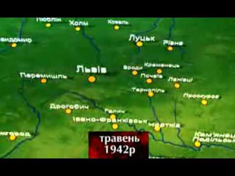 Історія ОУН-УПА