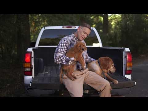 Taylor King & Associates - Buddy & Bear