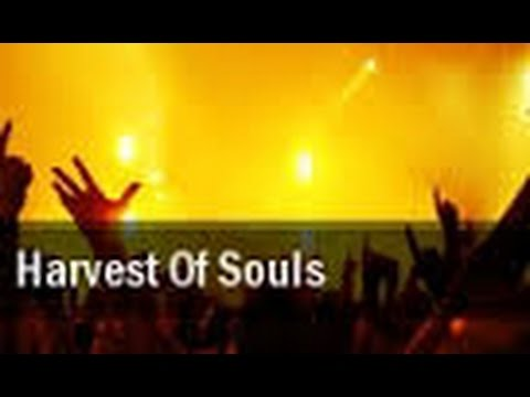 Souls saved in Israel. Amazing Follow Up Revelations! Carl Gallups on the RABBI WHO FOUND MESSIAH!