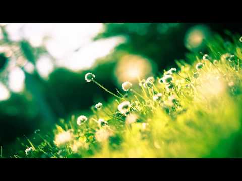 Mossy - Beautiful (Lessov Remix) [FREE]